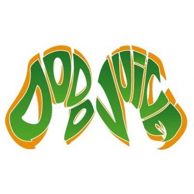 Dodo Juice Logo raamsticker - 6,8x12,5cm